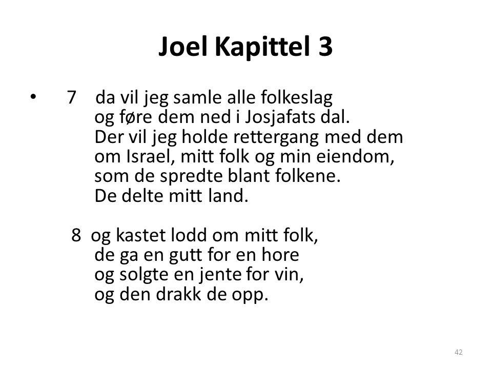 Joel Kapittel 3 • 7 da vil jeg samle alle folkeslag og føre dem ned i Josjafats dal. Der vil jeg holde rettergang med dem om Israel, mitt folk og min
