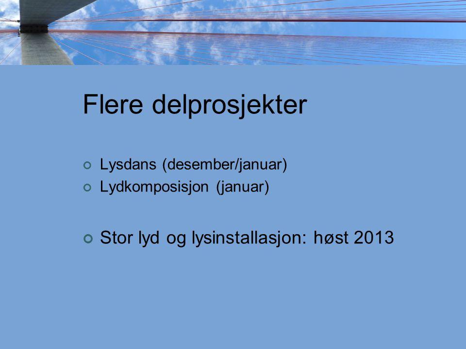 Flere delprosjekter Lysdans (desember/januar) Lydkomposisjon (januar) Stor lyd og lysinstallasjon: høst 2013