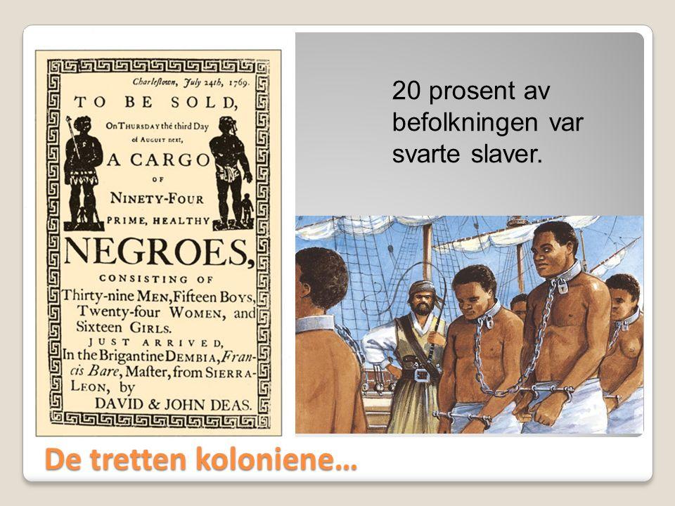 De tretten koloniene… 20 prosent av befolkningen var svarte slaver.