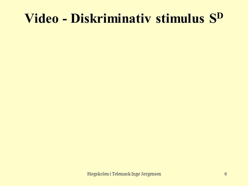 Høgskolen i Telemark Inge Jørgensen6 Video - Diskriminativ stimulus S D