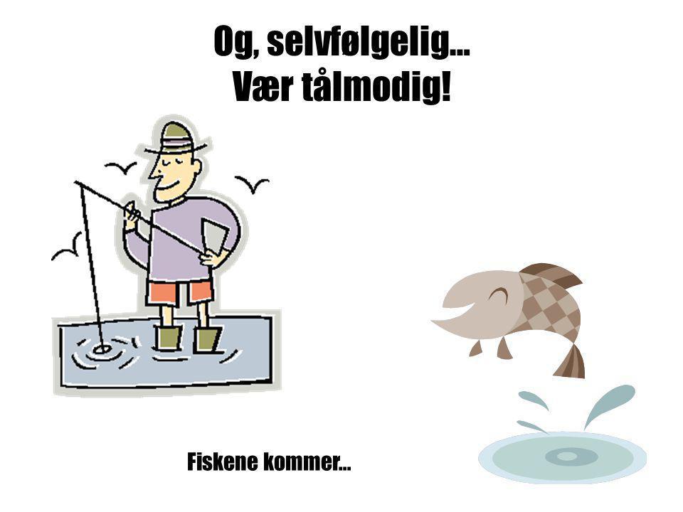 Og, selvfølgelig… Vær tålmodig! Fiskene kommer…