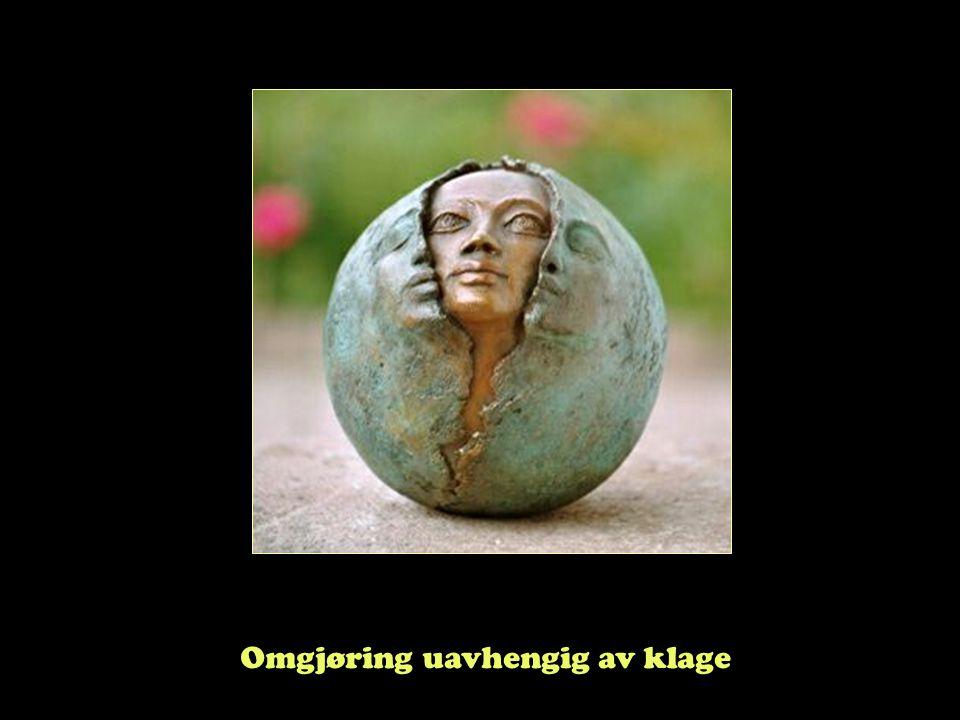 """Steinar Taubøll - UMB Klageinstansens kompetanse Fvl. § 34 • Klageinstansen prøver alle sider av saken • Statlig organ skal """"legge vekt på"""" kommunalt"""