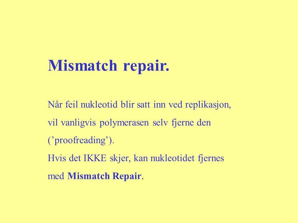 Mismatch repair. Når feil nukleotid blir satt inn ved replikasjon, vil vanligvis polymerasen selv fjerne den ('proofreading'). Hvis det IKKE skjer, ka