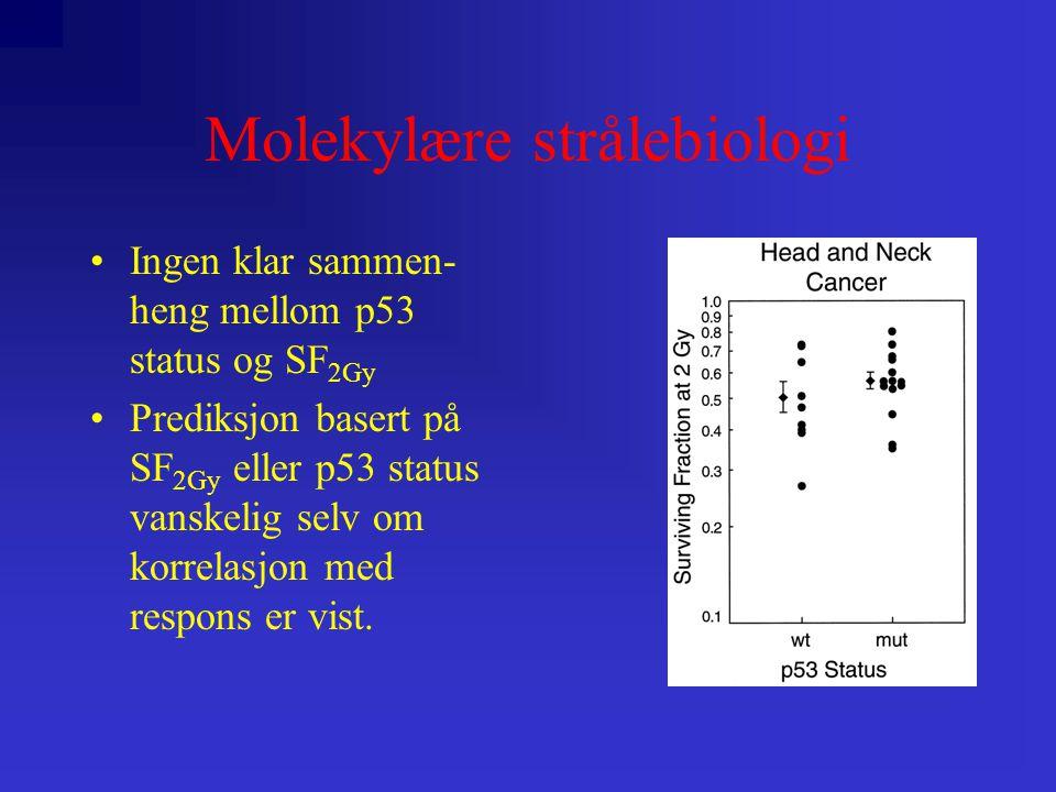 Molekylære strålebiologi •Ingen klar sammen- heng mellom p53 status og SF 2Gy •Prediksjon basert på SF 2Gy eller p53 status vanskelig selv om korrelasjon med respons er vist.