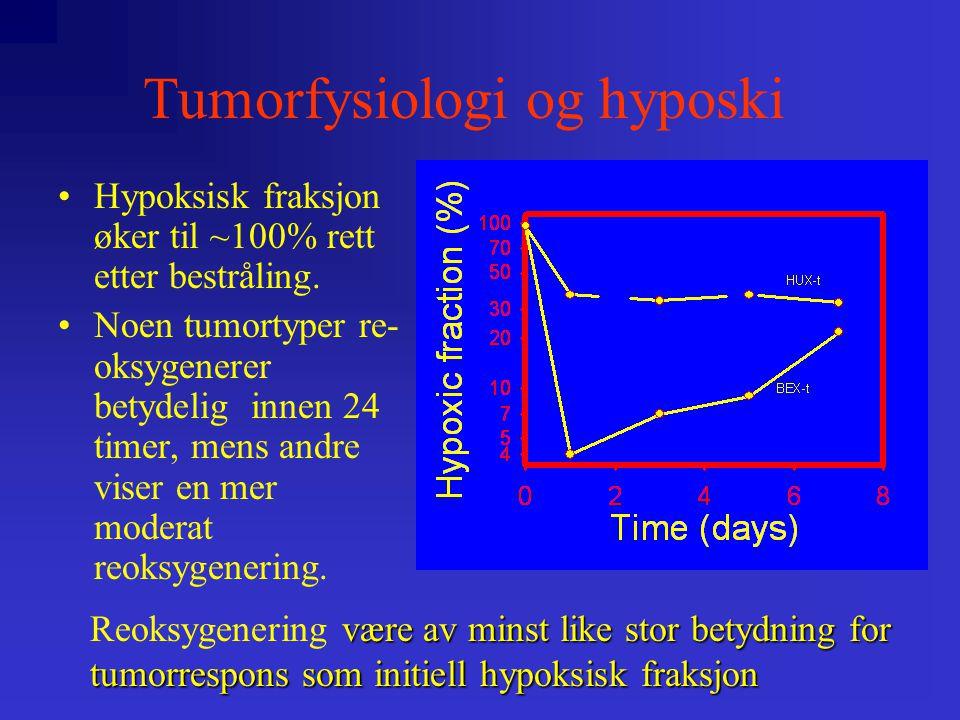 •Hypoksisk fraksjon øker til ~100% rett etter bestråling.