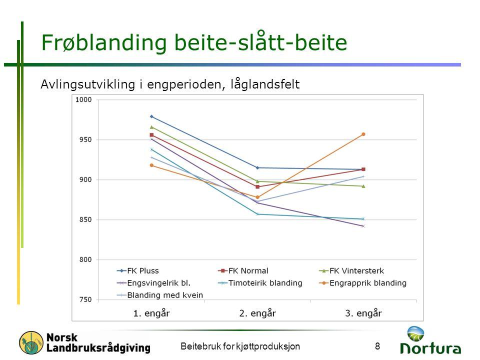Frøblanding beite-slått-beite Avlingsutvikling i engperioden, låglandsfelt Beitebruk for kjøttproduksjon8