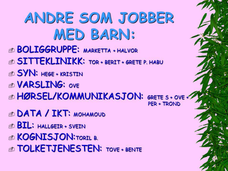 ANDRE SOM JOBBER MED BARN:  BOLIGGRUPPE: MARKETTA + HALVOR  SITTEKLINIKK: TOR + BERIT + GRETE P. HABU  SYN: HEGE + KRISTIN  VARSLING: OVE  HØRSEL