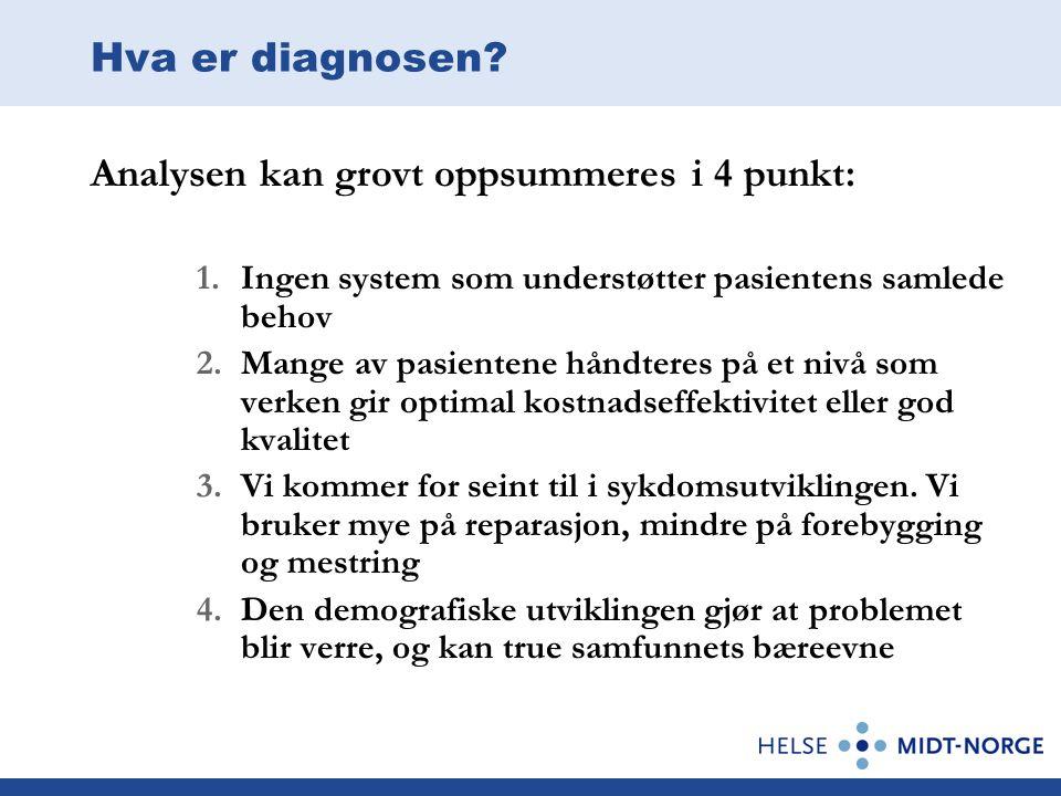 Hva er diagnosen? Analysen kan grovt oppsummeres i 4 punkt: 1.Ingen system som understøtter pasientens samlede behov 2.Mange av pasientene håndteres p