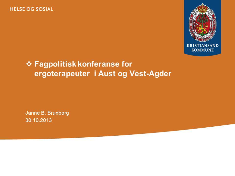  Fagpolitisk konferanse for ergoterapeuter i Aust og Vest-Agder Janne B. Brunborg 30.10.2013