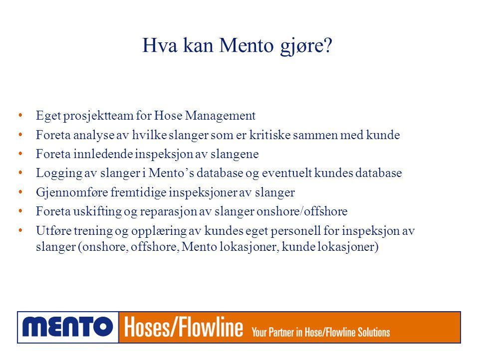 Hva kan Mento gjøre.