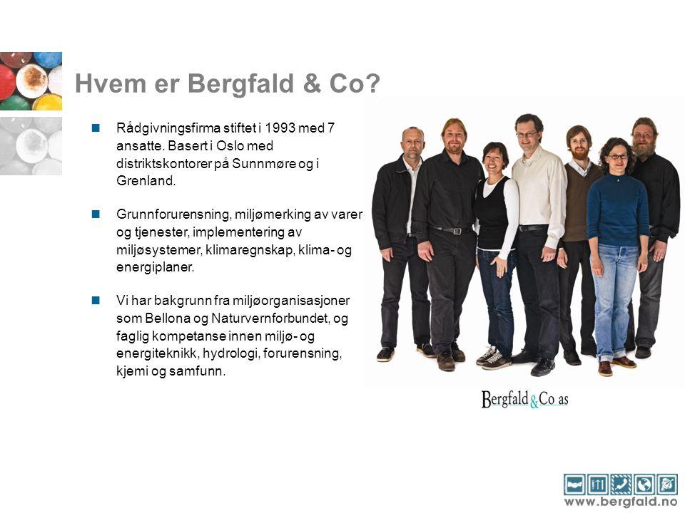 Hvem er Bergfald & Co?  Rådgivningsfirma stiftet i 1993 med 7 ansatte. Basert i Oslo med distriktskontorer på Sunnmøre og i Grenland.  Grunnforurens
