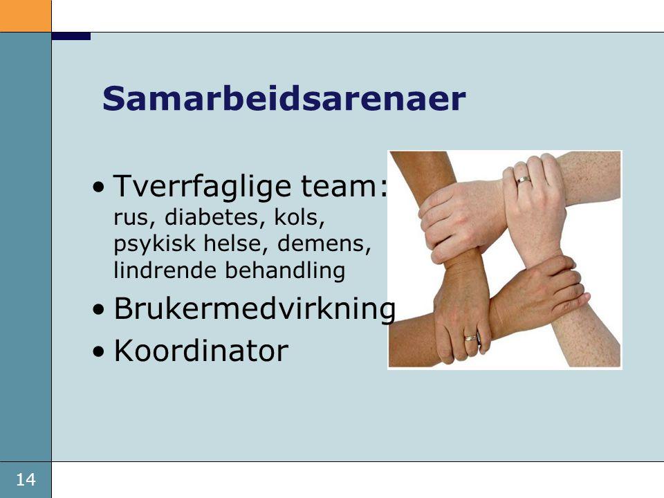 14 Samarbeidsarenaer •Tverrfaglige team: rus, diabetes, kols, psykisk helse, demens, lindrende behandling •Brukermedvirkning •Koordinator