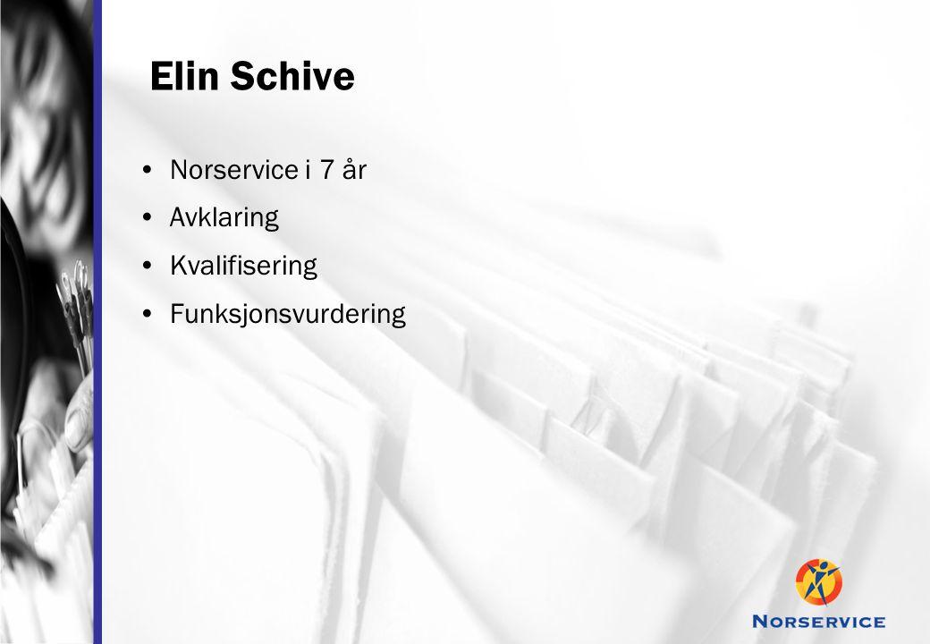 Elin Schive •Norservice i 7 år •Avklaring •Kvalifisering •Funksjonsvurdering