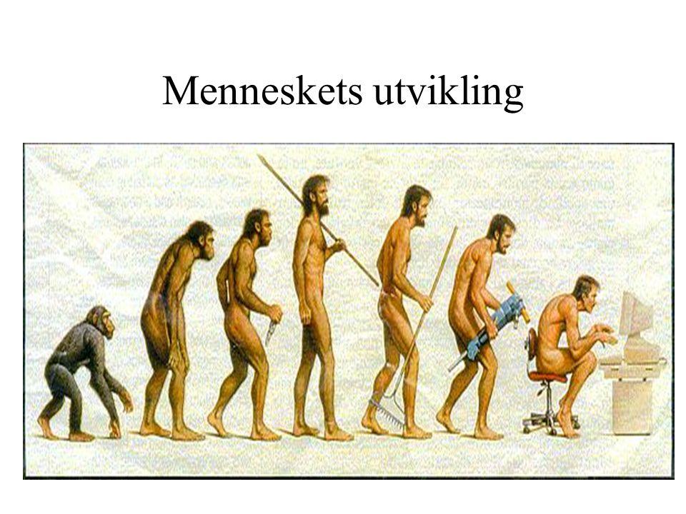Menneskets utvikling
