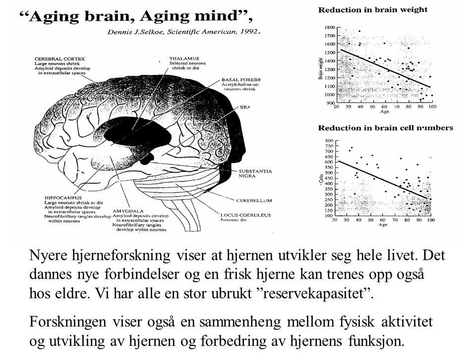 Informasjonsbearbeiding og aldring •Svekkes noe med alderen •Korttidshukommelse •Huske nye ting •Gjengi fra hukommelsen • Bevisst minne •Konsentrasjon ved forstyrrelser •Oppfatte nye ting raskt •Svekkes ikke med alderen •Daglig hurtigminne •Huske prosedyrer •Gjenkjenne fra hukommelsen • Ubevisst minne •Gjøre flere ting samtidig (arbeide med flere oppgaver) •Evnen til å forbedre sine mentale evner ved øvelse og trening
