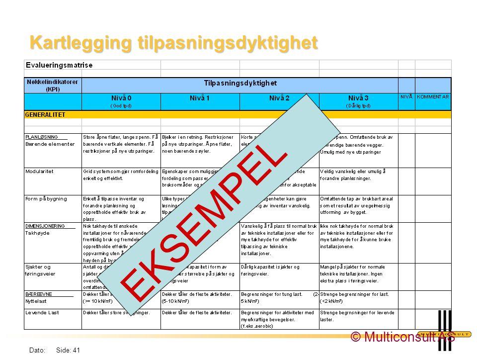Dato: Side: 41 Kartlegging tilpasningsdyktighet EKSEMPEL © Multiconsult AS