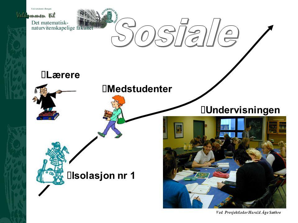 Ved Prosjektleder Harald Åge Sæthre  Lærere  Medstudenter  Isolasjon nr 1  Undervisningen