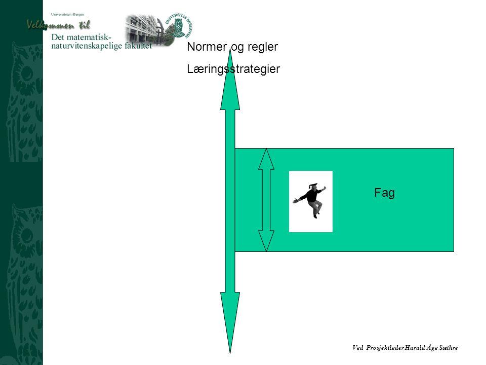 Ved Prosjektleder Harald Åge Sæthre Normer og regler Læringsstrategier Fag