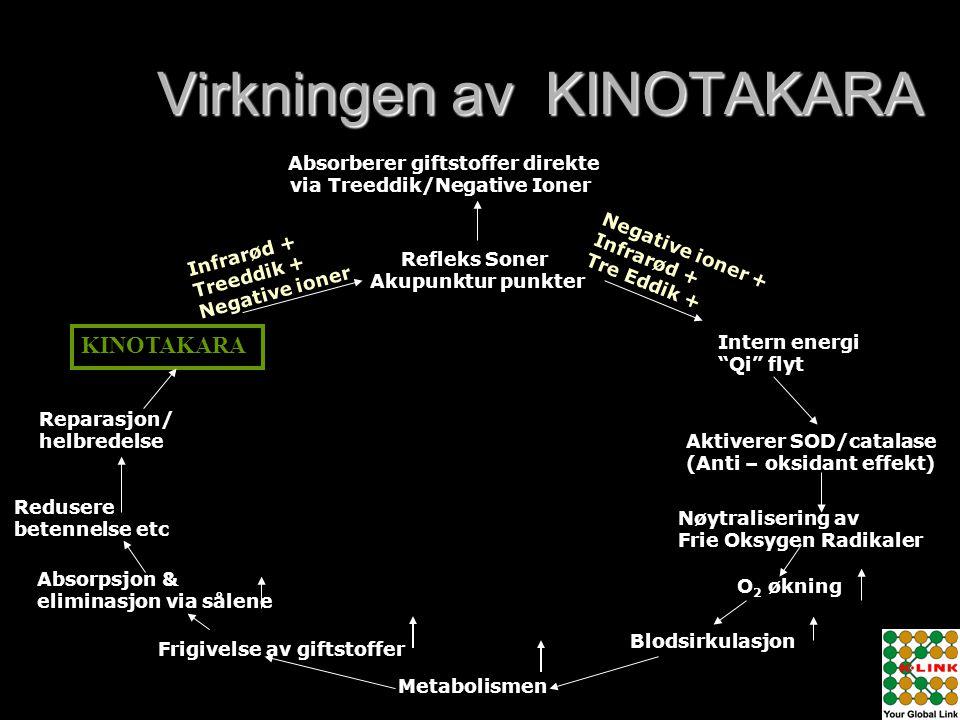 "Virkningen av KINOTAKARA Intern energi ""Qi"" flyt Aktiverer SOD/catalase (Anti – oksidant effekt) Nøytralisering av Frie Oksygen Radikaler O 2 økning B"