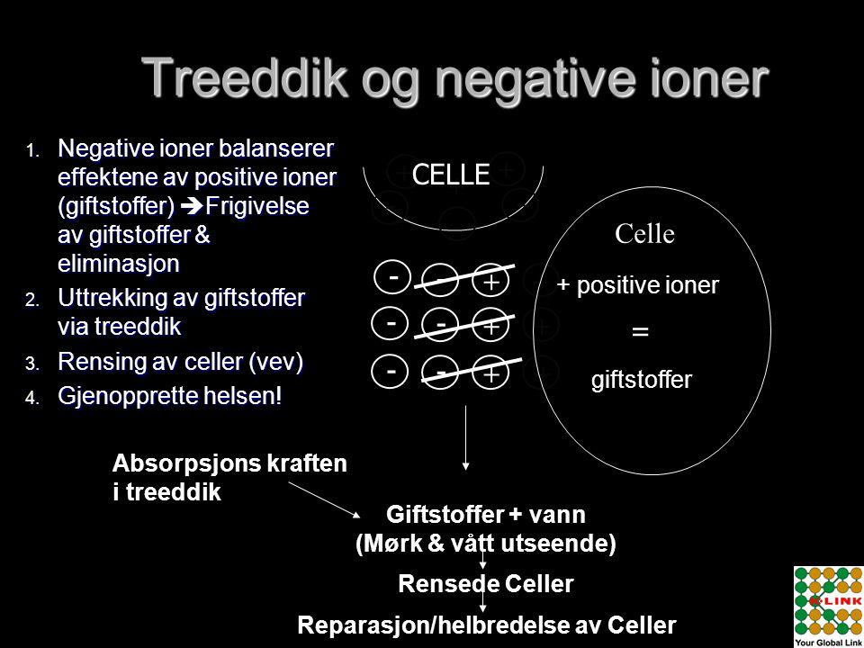 + + + - - - - - - - - + + + + + + Celle + positive ioner giftstoffer Absorpsjons kraften i treeddik Giftstoffer + vann (Mørk & vått utseende) Rensede