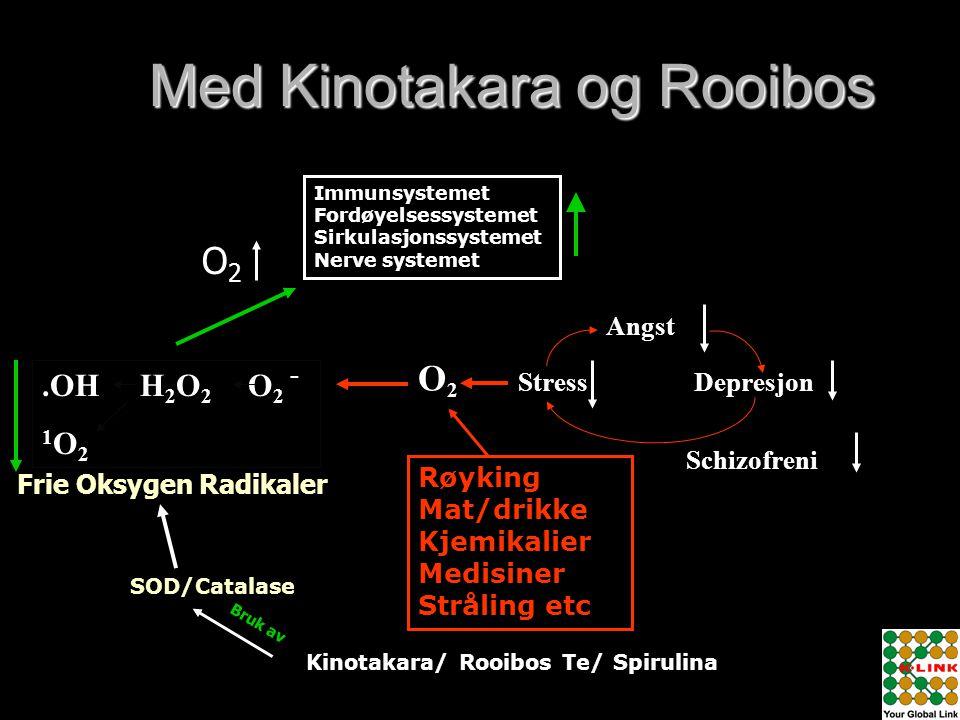 Med Kinotakara og Rooibos Angst Depresjon Schizofreni Stress O2O2.OH H 2 O 2 O 2 1 O 2 - Immunsystemet Fordøyelsessystemet Sirkulasjonssystemet Nerve