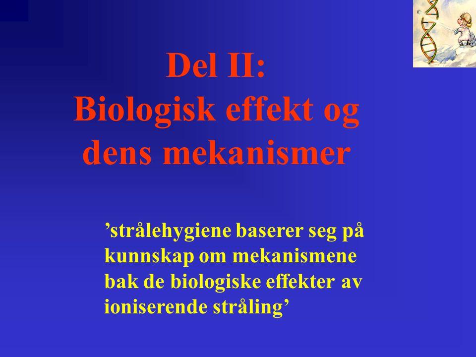 Del II: Biologisk effekt og dens mekanismer 'strålehygiene baserer seg på kunnskap om mekanismene bak de biologiske effekter av ioniserende stråling'
