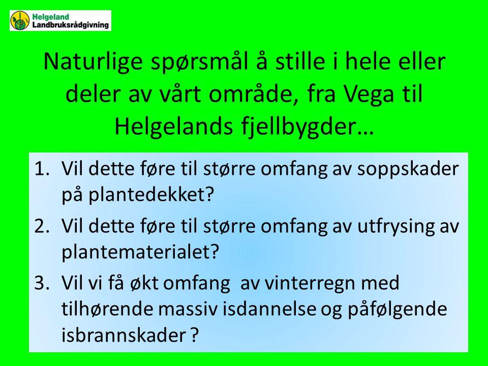 Naturlige spørsmål å stille i hele eller deler av vårt område, fra Vega til Helgelands fjellbygder… 1.Vil dette føre til større omfang av soppskader på plantedekket.