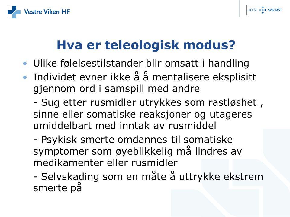 Hva er teleologisk modus.