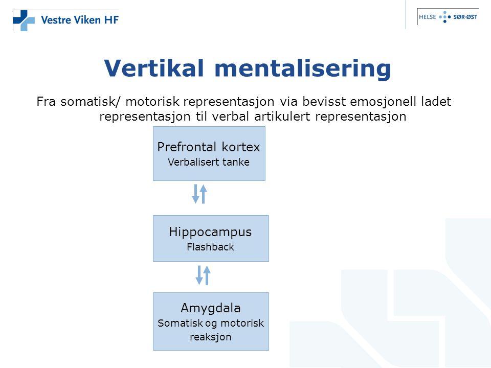 Vertikal mentalisering Fra somatisk/ motorisk representasjon via bevisst emosjonell ladet representasjon til verbal artikulert representasjon Prefrontal kortex Verbalisert tanke Hippocampus Flashback Amygdala Somatisk og motorisk reaksjon