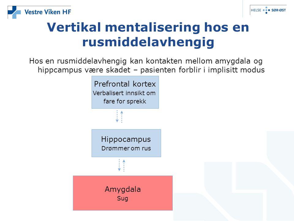 Vertikal mentalisering hos en rusmiddelavhengig Hos en rusmiddelavhengig kan kontakten mellom amygdala og hippcampus være skadet – pasienten forblir i implisitt modus Prefrontal kortex Verbalisert innsikt om fare for sprekk Hippocampus Drømmer om rus Amygdala Sug