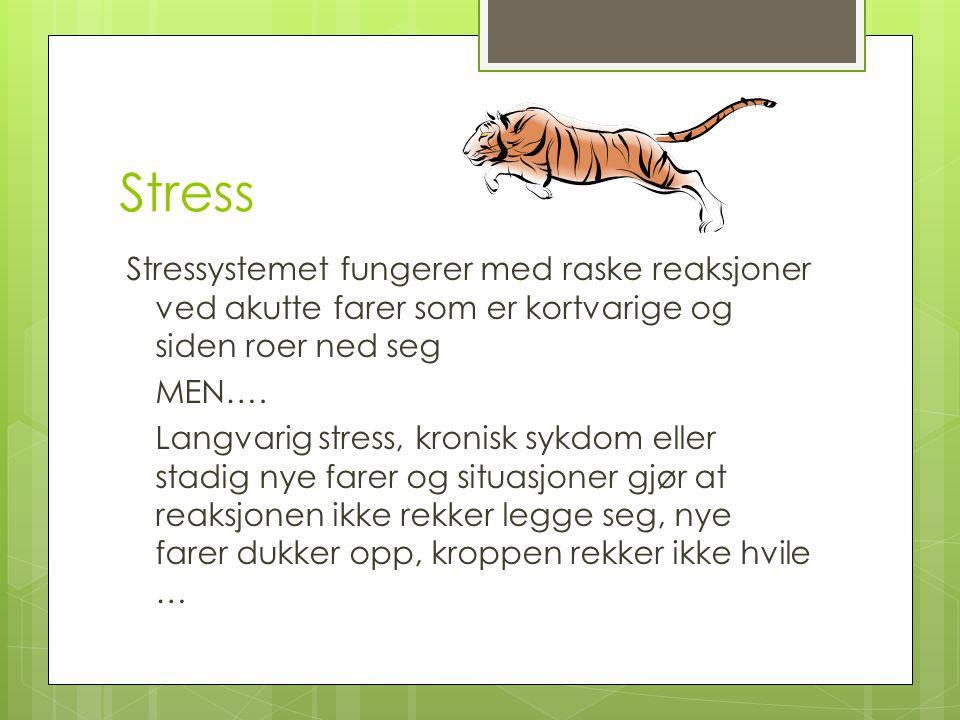 Stress Stressystemet fungerer med raske reaksjoner ved akutte farer som er kortvarige og siden roer ned seg MEN…. Langvarig stress, kronisk sykdom ell