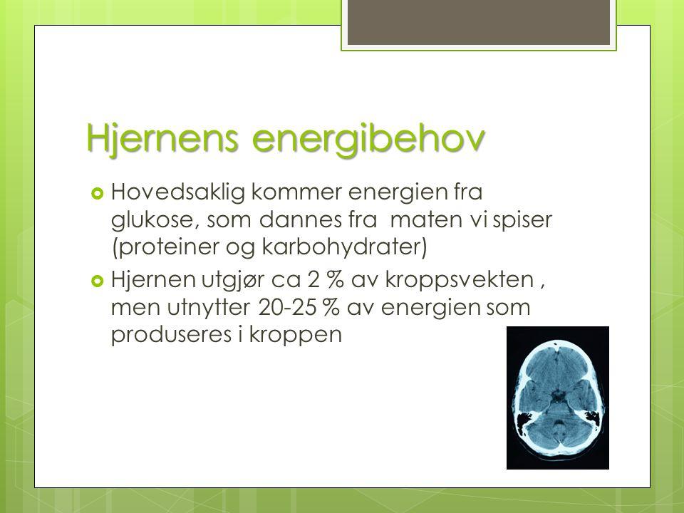 Hjernens energibehov  Hovedsaklig kommer energien fra glukose, som dannes fra maten vi spiser (proteiner og karbohydrater)  Hjernen utgjør ca 2 % av