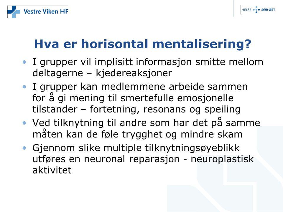 Hva er horisontal mentalisering.