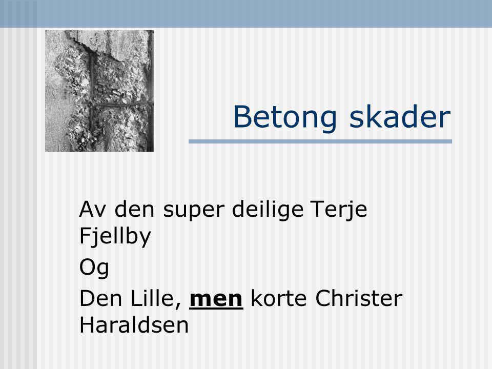 Betong skader Av den super deilige Terje Fjellby Og Den Lille, men korte Christer Haraldsen