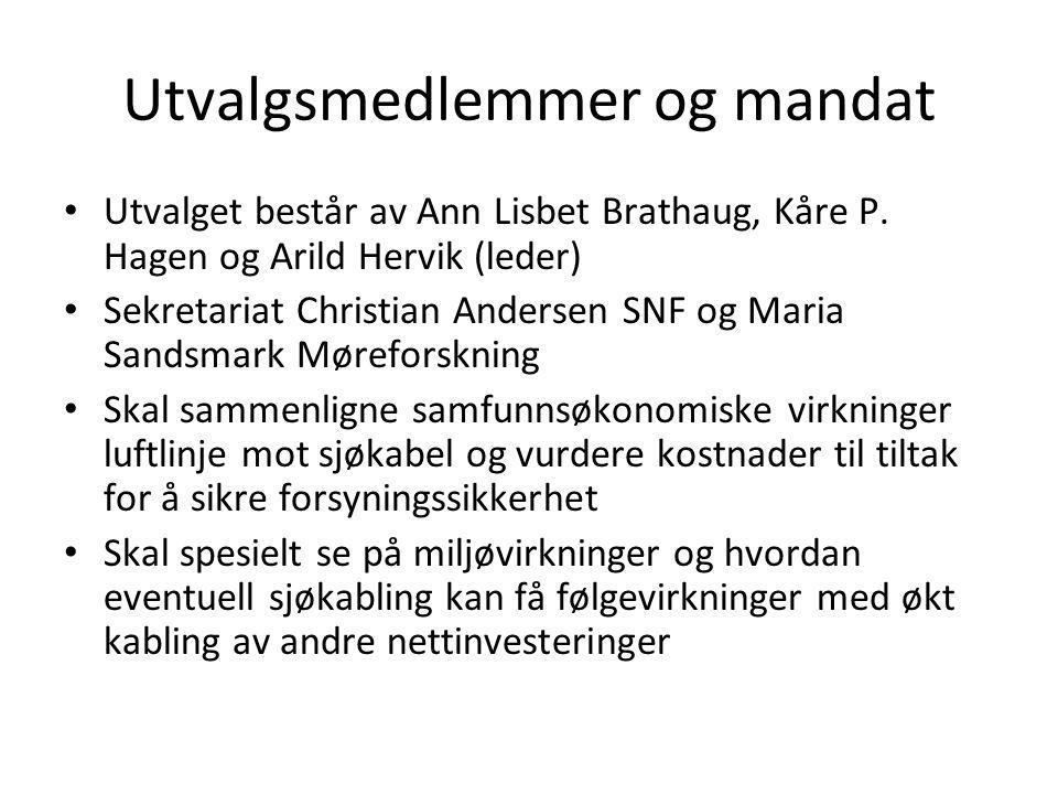 Utvalgsmedlemmer og mandat • Utvalget består av Ann Lisbet Brathaug, Kåre P. Hagen og Arild Hervik (leder) • Sekretariat Christian Andersen SNF og Mar