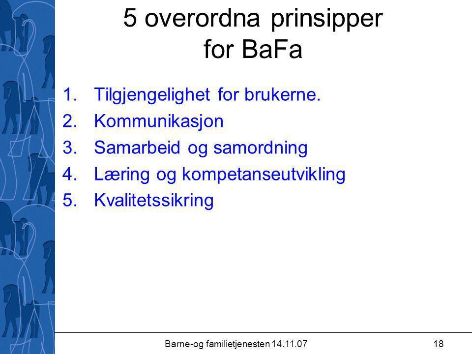 Barne-og familietjenesten 14.11.0718 5 overordna prinsipper for BaFa 1.Tilgjengelighet for brukerne.