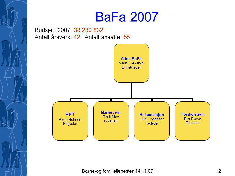 Barne-og familietjenesten 14.11.072 BaFa 2007 Adm.