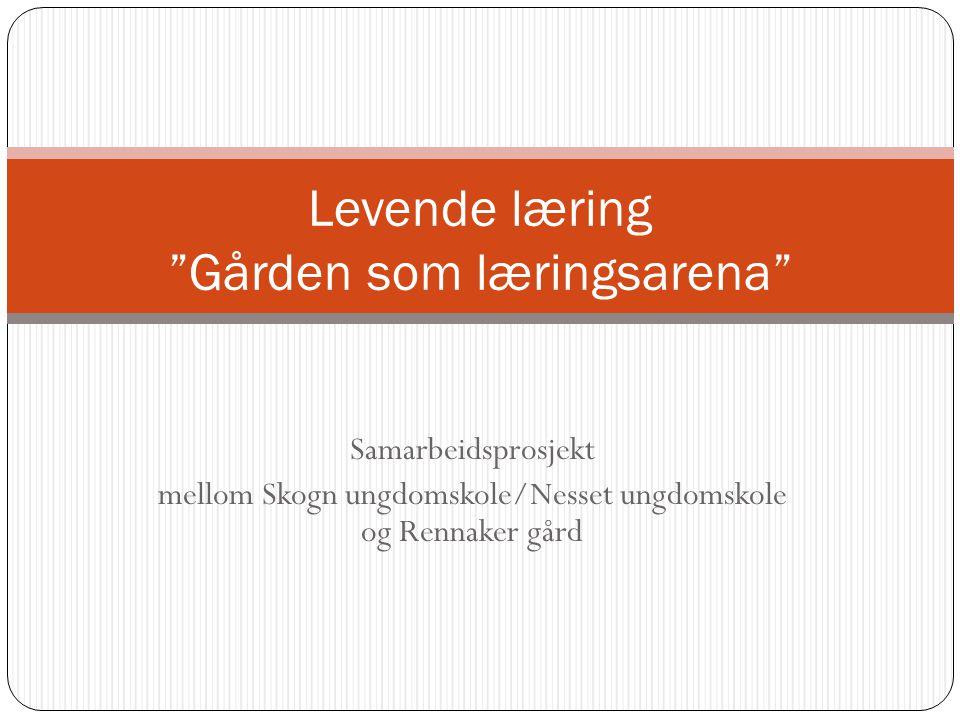 """Samarbeidsprosjekt mellom Skogn ungdomskole/Nesset ungdomskole og Rennaker gård Levende læring """"Gården som læringsarena"""""""