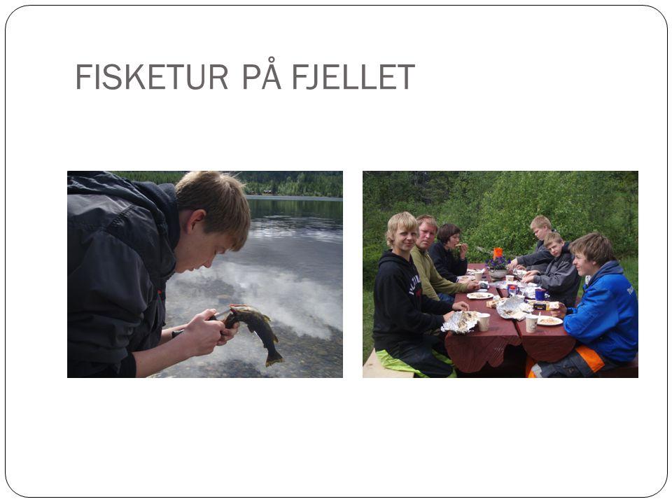 FISKETUR PÅ FJELLET