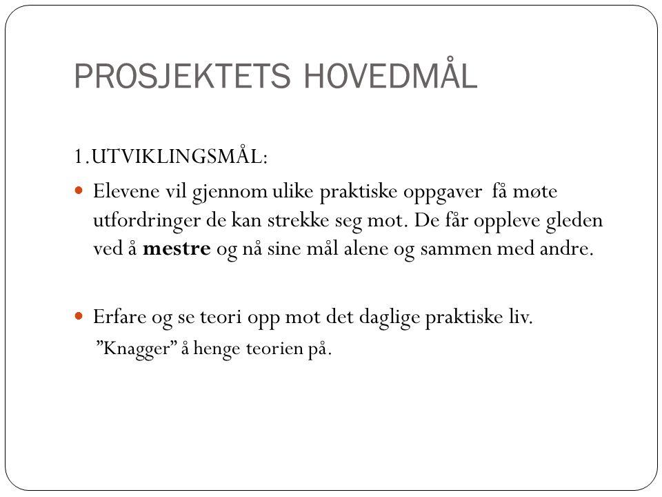 PROSJEKTETS HOVEDMÅL 2.