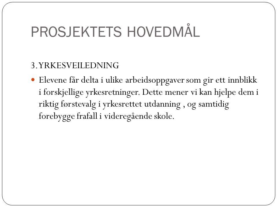 Fakta fra Stiklestadkonferansen 2008 og forskningsprosjektet Satsing mot frafall  3 av 10 dropper videregående skole.