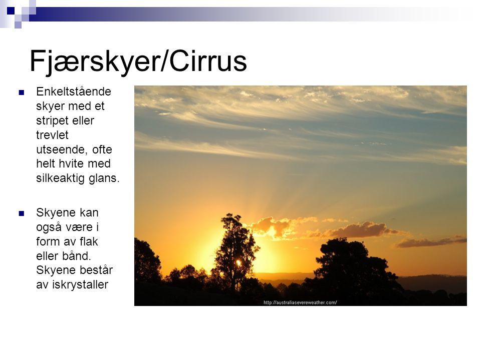 Fjærskyer/Cirrus  Enkeltstående skyer med et stripet eller trevlet utseende, ofte helt hvite med silkeaktig glans.  Skyene kan også være i form av f