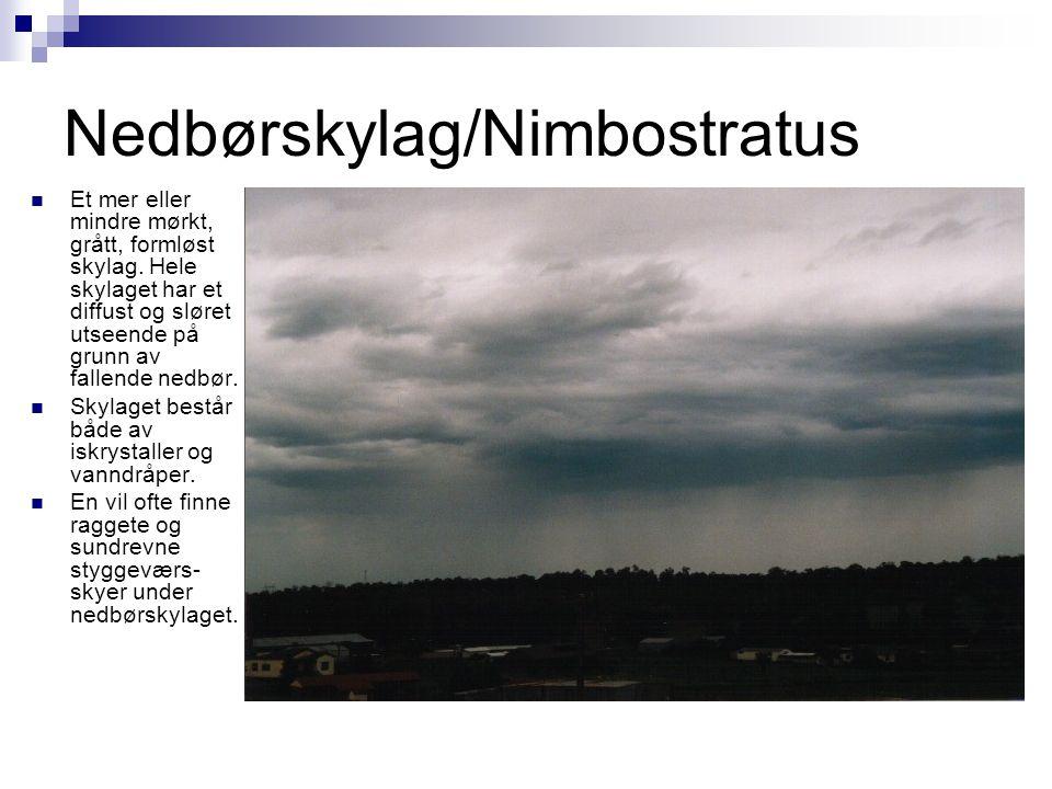 Nedbørskylag/Nimbostratus  Et mer eller mindre mørkt, grått, formløst skylag. Hele skylaget har et diffust og sløret utseende på grunn av fallende ne