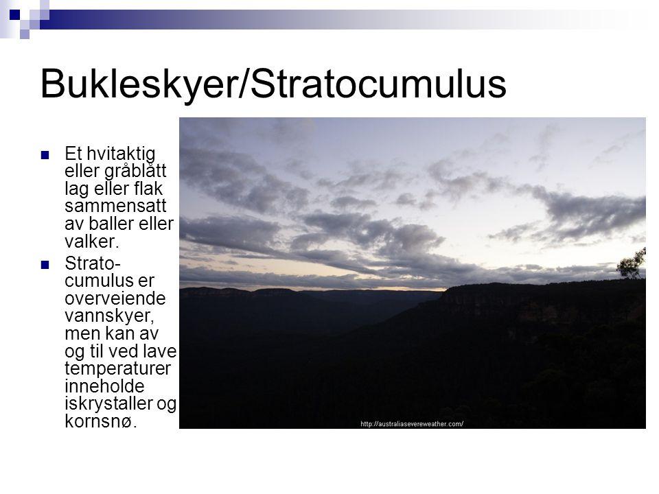 Bukleskyer/Stratocumulus  Et hvitaktig eller gråblått lag eller flak sammensatt av baller eller valker.  Strato- cumulus er overveiende vannskyer, m