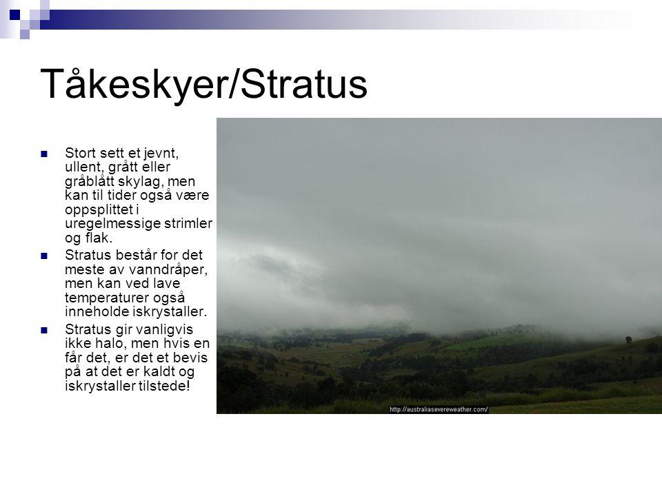 Tåkeskyer/Stratus  Stort sett et jevnt, ullent, grått eller gråblått skylag, men kan til tider også være oppsplittet i uregelmessige strimler og flak