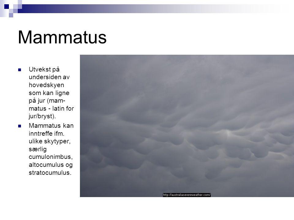 Mammatus  Utvekst på undersiden av hovedskyen som kan ligne på jur (mam- matus - latin for jur/bryst).  Mammatus kan inntreffe ifm. ulike skytyper,
