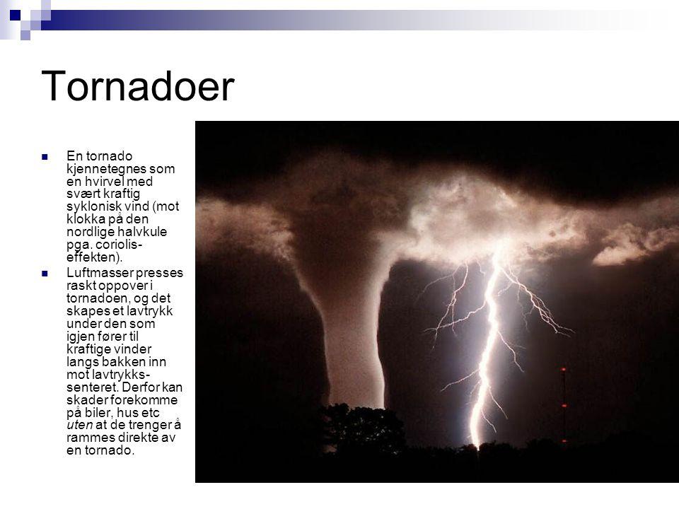 Tornadoer  En tornado kjennetegnes som en hvirvel med svært kraftig syklonisk vind (mot klokka på den nordlige halvkule pga. coriolis- effekten).  L