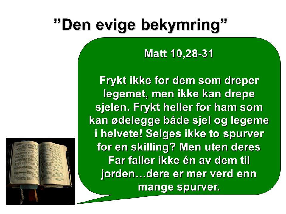 """""""Den evige bekymring"""" Matt 10,28-31 Frykt ikke for dem som dreper legemet, men ikke kan drepe sjelen. Frykt heller for ham som kan ødelegge både sjel"""