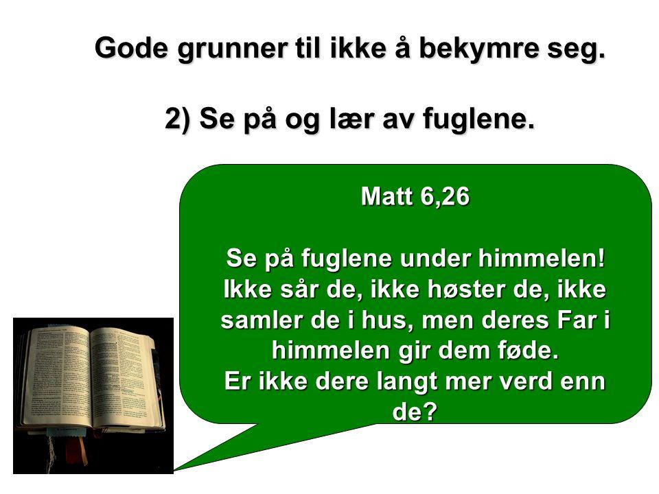 Matt 6,26 Se på fuglene under himmelen! Ikke sår de, ikke høster de, ikke samler de i hus, men deres Far i himmelen gir dem føde. Er ikke dere langt m