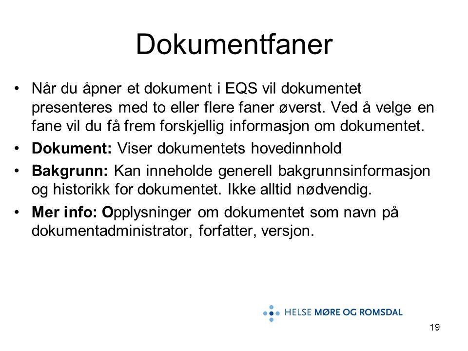 19 •Når du åpner et dokument i EQS vil dokumentet presenteres med to eller flere faner øverst. Ved å velge en fane vil du få frem forskjellig informas